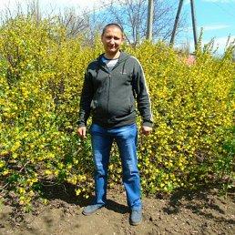 Вова, 37 лет, Мелитополь
