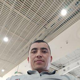 Murad, 30 лет, Мытищи