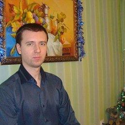 Антон, 28 лет, Тамбов