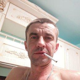 Виктор, 43 года, Тверь