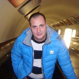ВЛАДИМИР, 36 лет, Саратов