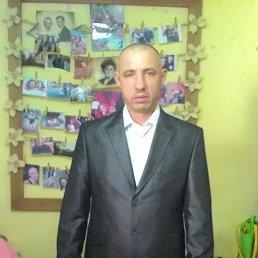 Миша, 48 лет, Львов