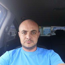 Леша, 32 года, Рязань