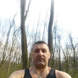 Олег, 52 года, Курск