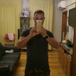 Михаил, 38 лет, Ростов-на-Дону