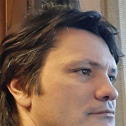 Тимур, 45 лет, Дмитров