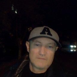 Николай, 52 года, Песочин