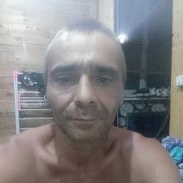 Алексей, 44 года, Дальнереченск