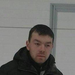 Александр, 32 года, Йошкар-Ола