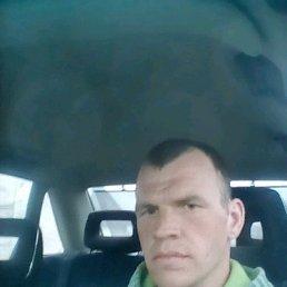 Артур, 32 года, Калининград