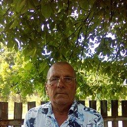 виктор, 63 года, Винница