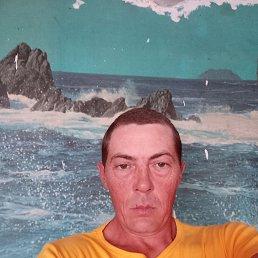 Тван, 42 года, Новосибирск