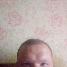 Евгений, 36 лет, Кандалакша