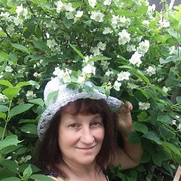 Елена, 53 года, Вязьма