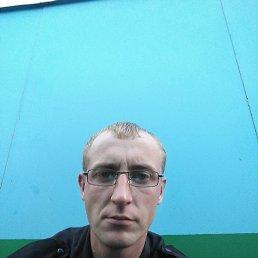 Василий, 36 лет, Завидово