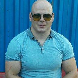 Геннадий, 31 год, Кременная