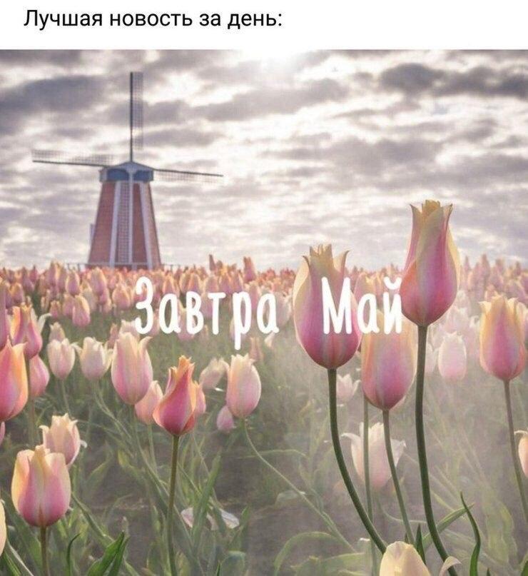 БЕСЕДкА - 30 апреля 2020 в 22:04