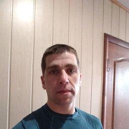 Сергей, 28 лет, Кременчуг