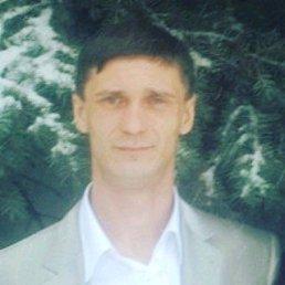 Николай, 29 лет, Хреновое