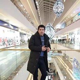 Boburjon, 25 лет, Солнечногорск