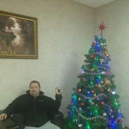 Игорь, 52 года, Ростов-на-Дону