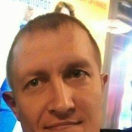 Роман, 37 лет, Новокузнецк