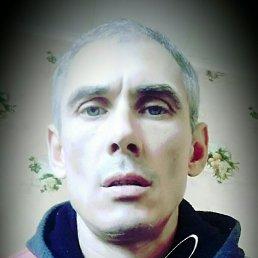 Вячеслав, 41 год, Мариуполь