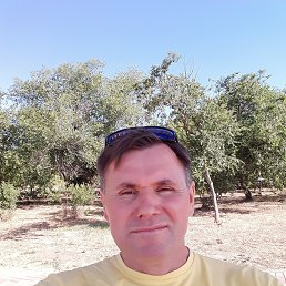 Владимир, 45 лет, Волгоград