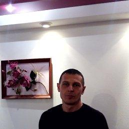 Виталий, 41 год, Прилуки