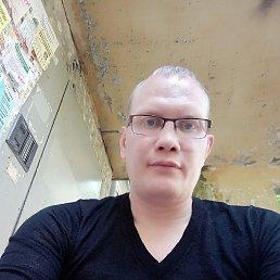 Андрей, 35 лет, Пермь