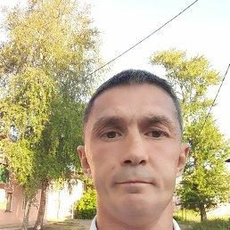 Николай, 40 лет, Липецк