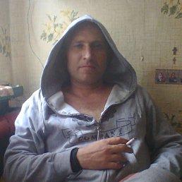 Максим, 36 лет, Луганск