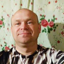 Алексей, 42 года, Киров