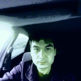 Ануар, 29 лет, Алматы