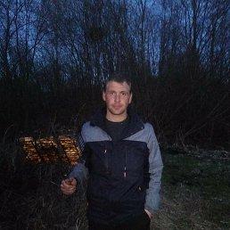 Владимир, 28 лет, Петрозаводск