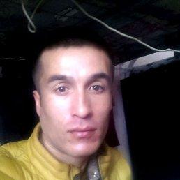 Жамал, 28 лет, Кстово
