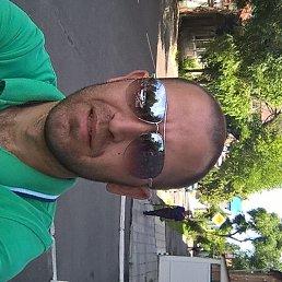 Владимир, 32 года, Воронеж