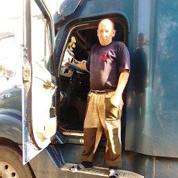 Михаил, 37 лет, Смоленское