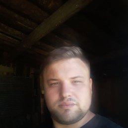 Сергей, 24 года, Вологда