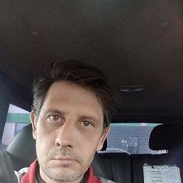 Анатолий, 43 года, Ижевск