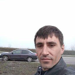 Андрей, 32 года, Новомосковск