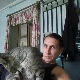Андрей, 38 лет, Звенигово