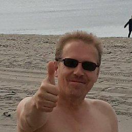 Юрий, 48 лет, Калининград