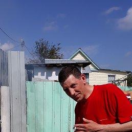 Юрий, 53 года, Киреевск