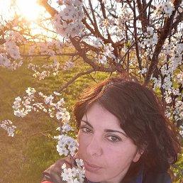Карина, 36 лет, Ставрополь