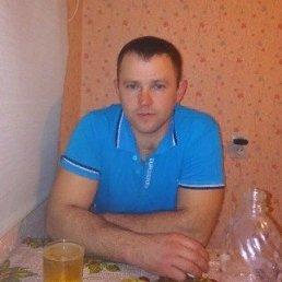 денис, 36 лет, Саратов