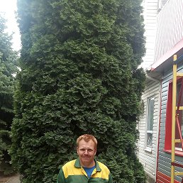 Александр, 36 лет, Батайск
