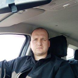 Игорь, 36 лет, Кременчуг