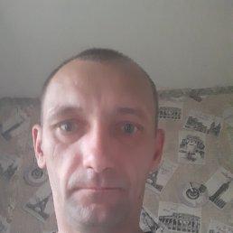Станислав, 38 лет, Краматорск