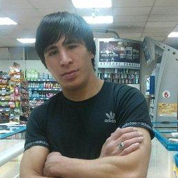 Заурдин, 31 год, Нефтекумск